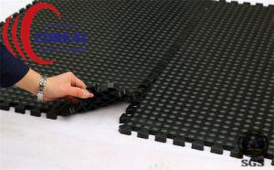 Gym Rubber Tile, Gym Floor Mat pictures & photos