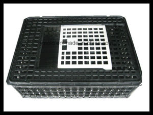 Plastic Parts for Animal Breeding/ Coop