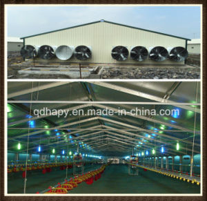 Hapy Light Steel Structure Poultry House pictures & photos