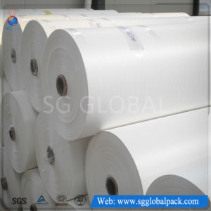 Packaging Furniture White Flat Woven Polypropylene Fabric in Roll pictures & photos