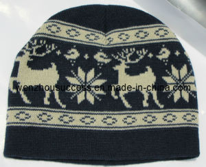 Knitted Beanie Hat (SS12-CK418) pictures & photos