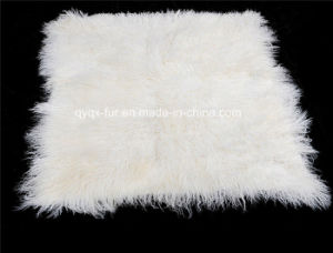 2015 Tibet Sheep Fur Plate on Sale pictures & photos