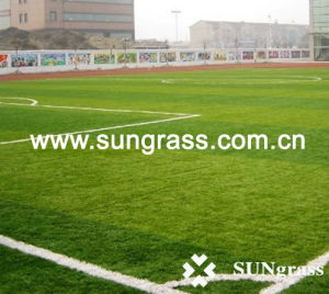 High Quality Plastic Grass Carpet for Football or Sports (MSTT) pictures & photos