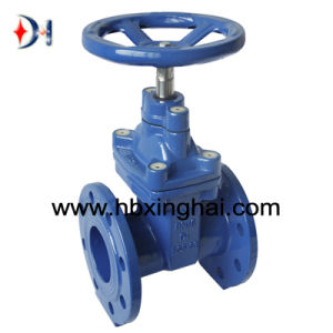 Resilient Seated Ductile Iron Gate Valve BS5163