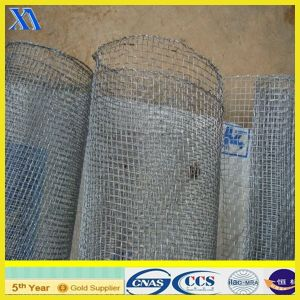 Galvanized Square Welded Iron Wire Mesh (XA-SM006) pictures & photos