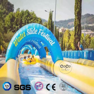 Coco Water Design Inflatable Water Slide LG8091 pictures & photos