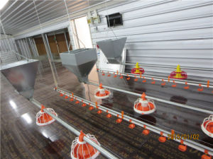 Poultry Equipment for Layers and Broilers pictures & photos