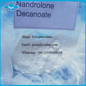 Bodybuilding Steroid Powder Decanoate Deca CAS 360-70-3 pictures & photos