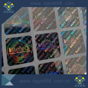 Custom Design High Resolution Holographic Hologram Label with Rainblow Effect pictures & photos