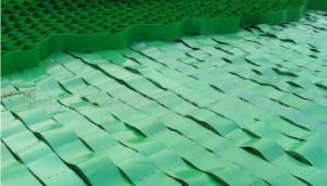 HDPE Geocells Used as Road Contruction Materials pictures & photos