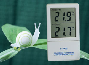 Newest Aquarium & Ambient Thermometer pictures & photos