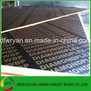 12mm Construction Plywood pictures & photos