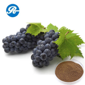 CAS No. 501-36-0 Resveratrol for Anti-Cancer pictures & photos