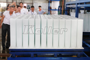 10 Tons/Day Automatic Block Ice Machine for 25kg/50kg/100kg Block Ice pictures & photos