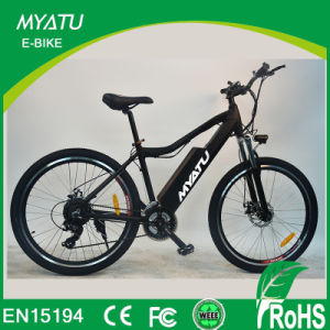 New Hot 2018 Mountain Electric Bicycle pictures & photos