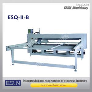 Esq-II-B Quilting Machine pictures & photos
