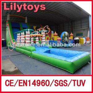Rain Forest Inflatable Giant Water Slide, Inflatable Jungle Water Slide pictures & photos