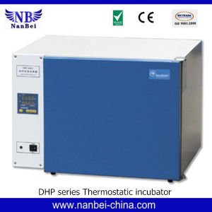 Professional Electric Thermostatic Incubator with LCD Screen pictures & photos