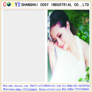 Most professional Supplier of PVC Cold Lamination Film pictures & photos