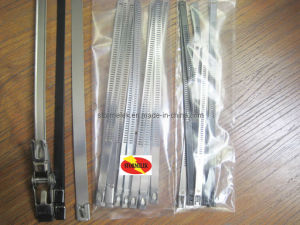 Stainless Steel Cable Tie-Ladder Lock Type