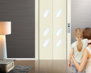 Home Elevator Manufacture with German Technology pictures & photos