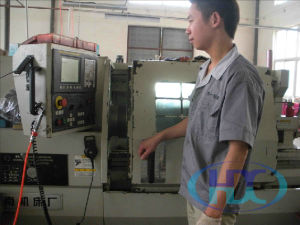 Oil Seal Mould for Vacuum Vulcanizing Press (TC, SC, TB, SB and so on)