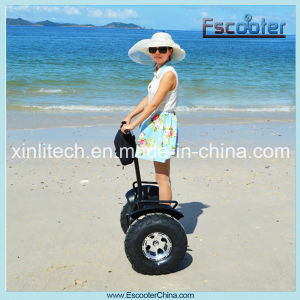 High Tech Model New Electric Chariot for Sale 48V, Electric Bike for Sale pictures & photos