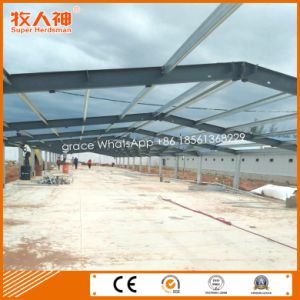 Turn-Key Poultry Shed Construction with Farming Equipment pictures & photos