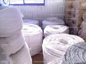 Africa UV Resistant Cage Farming Fish Braided PE Rope pictures & photos