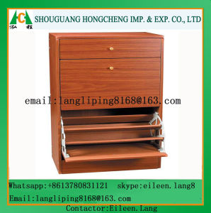 Wood Panel Shoe Cabinet pictures & photos