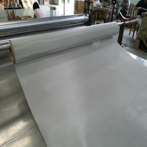 Stainless Steel 304L Wire Mesh pictures & photos
