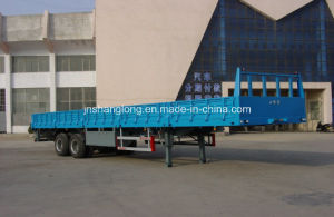 Two Axle 40FT Container or Cargo Semi-Trailer pictures & photos