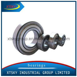 Xtsky Deep Groove Ball Bearing (16020-2RS) pictures & photos