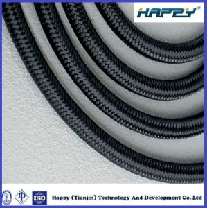 R5 Textile Covered Hydraulic Hose for Car Engine Use pictures & photos