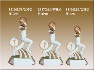 Sport Trophies for Cricket (85570M)