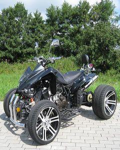 EEC 250CC Racing ATV 250CC Quad Bike (XS-D055-1)