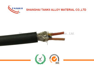 EX chromel via constantan thermocouple wire 2* 1.0 sqm with Flam retardant PVC insulation and armoured GI steel wire pictures & photos