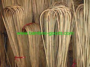 Bamboo U (BU001) pictures & photos