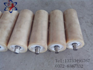 Nylon Roller High Wear Resistance and Heavy Loading Idler for Belt Conveyor pictures & photos