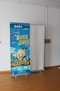 Budget Customed Roll up Banner, Pull up Banner for Promotion