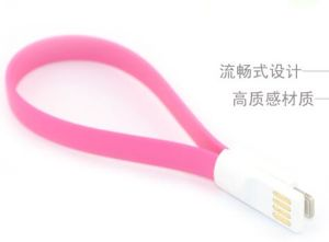 Magnet Charge Cable for iPhone6/iPhone5/iPhone5C/iPad Mini pictures & photos