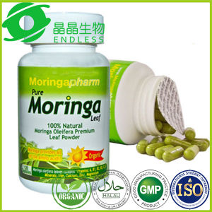 Moringa Powder Wholesale Vegetarian Diet Supplement pictures & photos