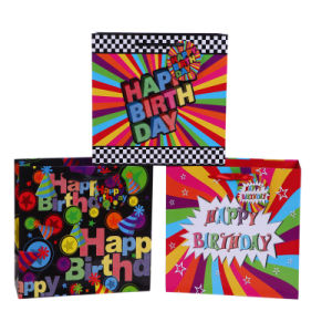 Birthday Luxury Elegant Carrier Paper Bags Color Bag for Party pictures & photos