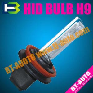Auto HID H9/Xenon Bulb H9 35W (HID Xenon Bulb H9)