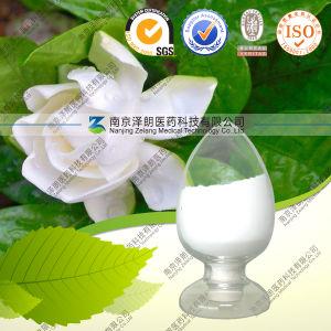 High Quality Natural Gardenia Extract Antioxidat Gardenoside pictures & photos