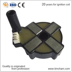 Auto Parts Igniton Coil