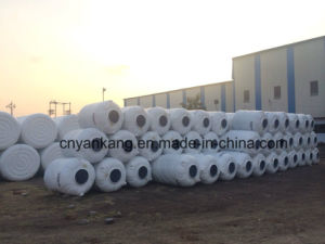 Big Plastic Water Tank Blow Molding Machine pictures & photos