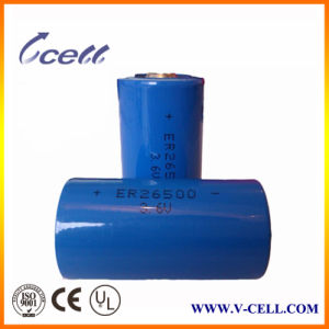 Primary Lithium Battery Er26500m 3.6V 6000mAh C