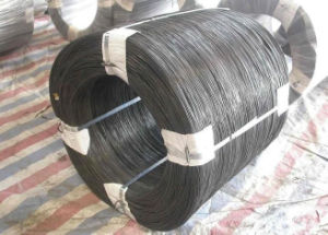 Q195 Steel Cold Drawn Wire & Nail Wire pictures & photos