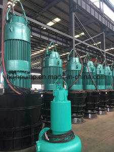 Submersible Propeller Pump by Axial Flow pictures & photos